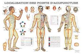 Méridiens d'acupuncture